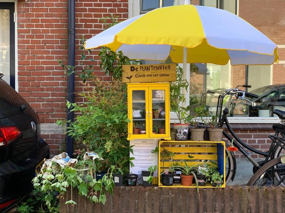 Plantenasiel Hilversum, waar je gratis stekjes en zaden kan vinden.