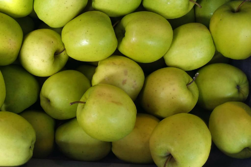 Groene appels in een kistje